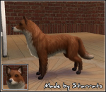 Fox Dog Preview