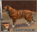 Pet Tiger Preview