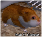 Hidden Womrat/Hamster Preview