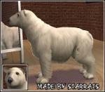 Polar Bear Preview