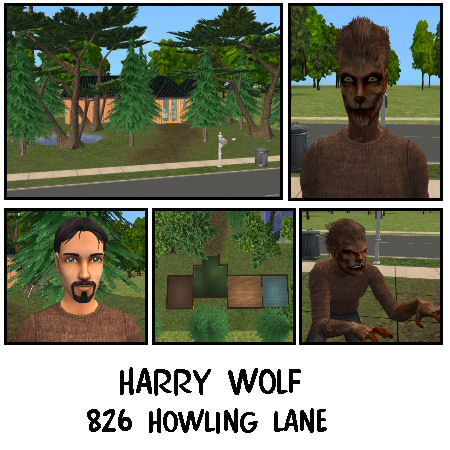 826 Howling Lane Preview
