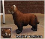 Red Panda Preview