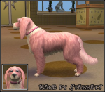 Valentine Dog Preview