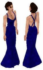 Blue Long Dress Preview
